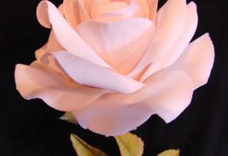 Curso de flores con Carlos Lischetti