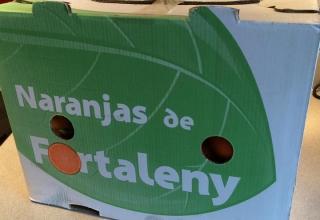 Naranjas Fortaleny
